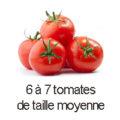 6 a 7 tomates