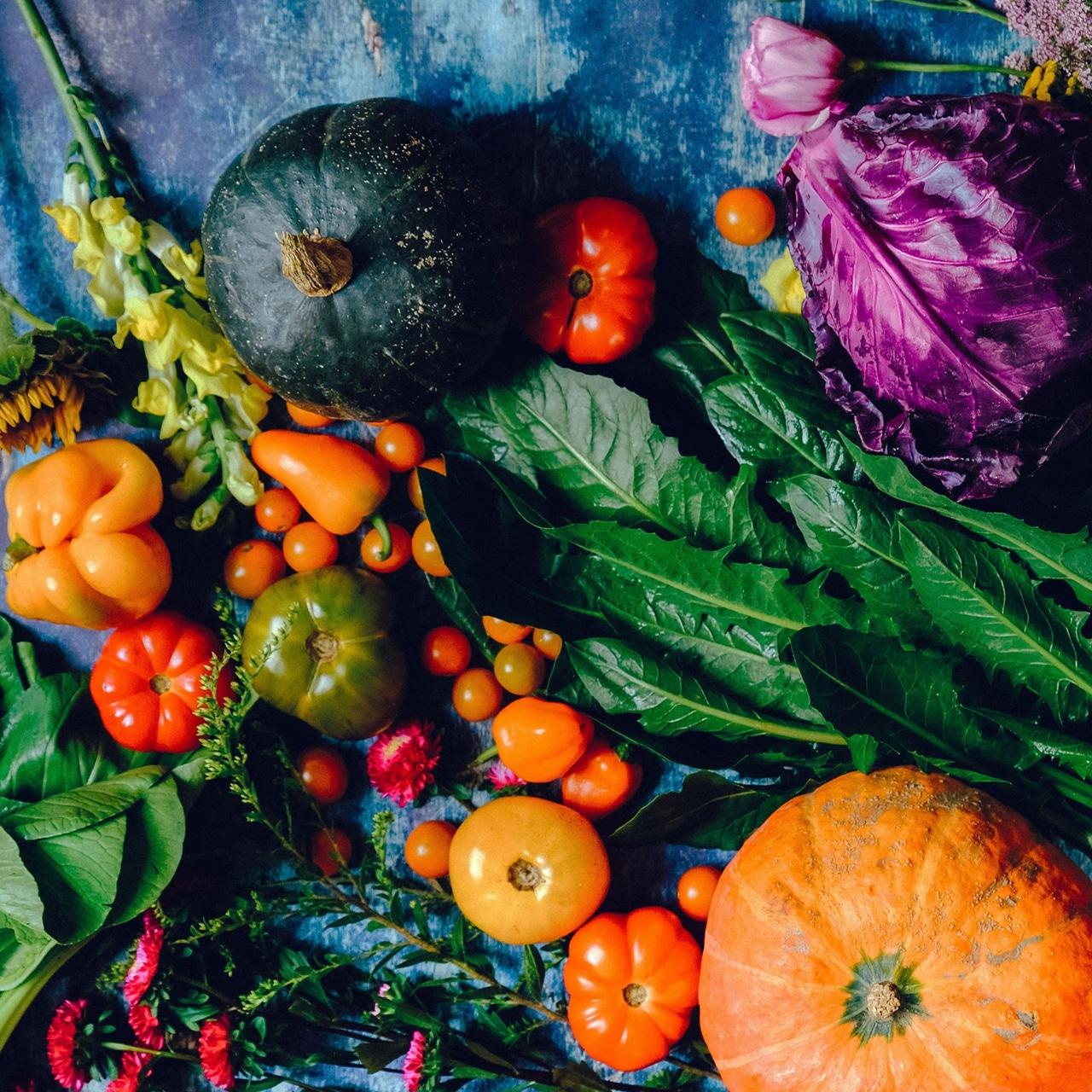 Révolution végétale